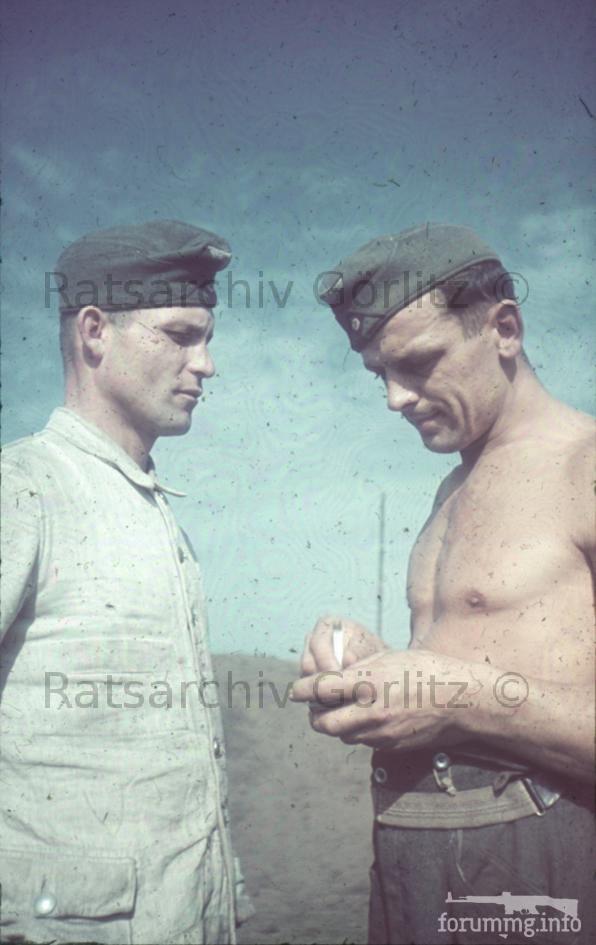 123286 - Военное фото 1939-1945 г.г. Западный фронт и Африка.