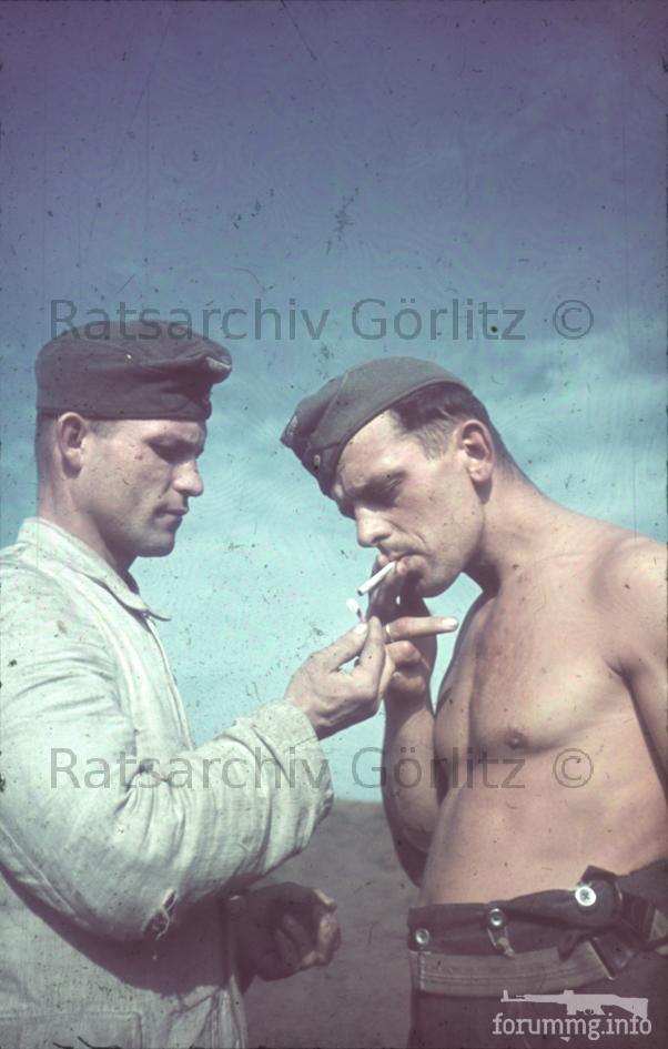 123287 - Военное фото 1939-1945 г.г. Западный фронт и Африка.