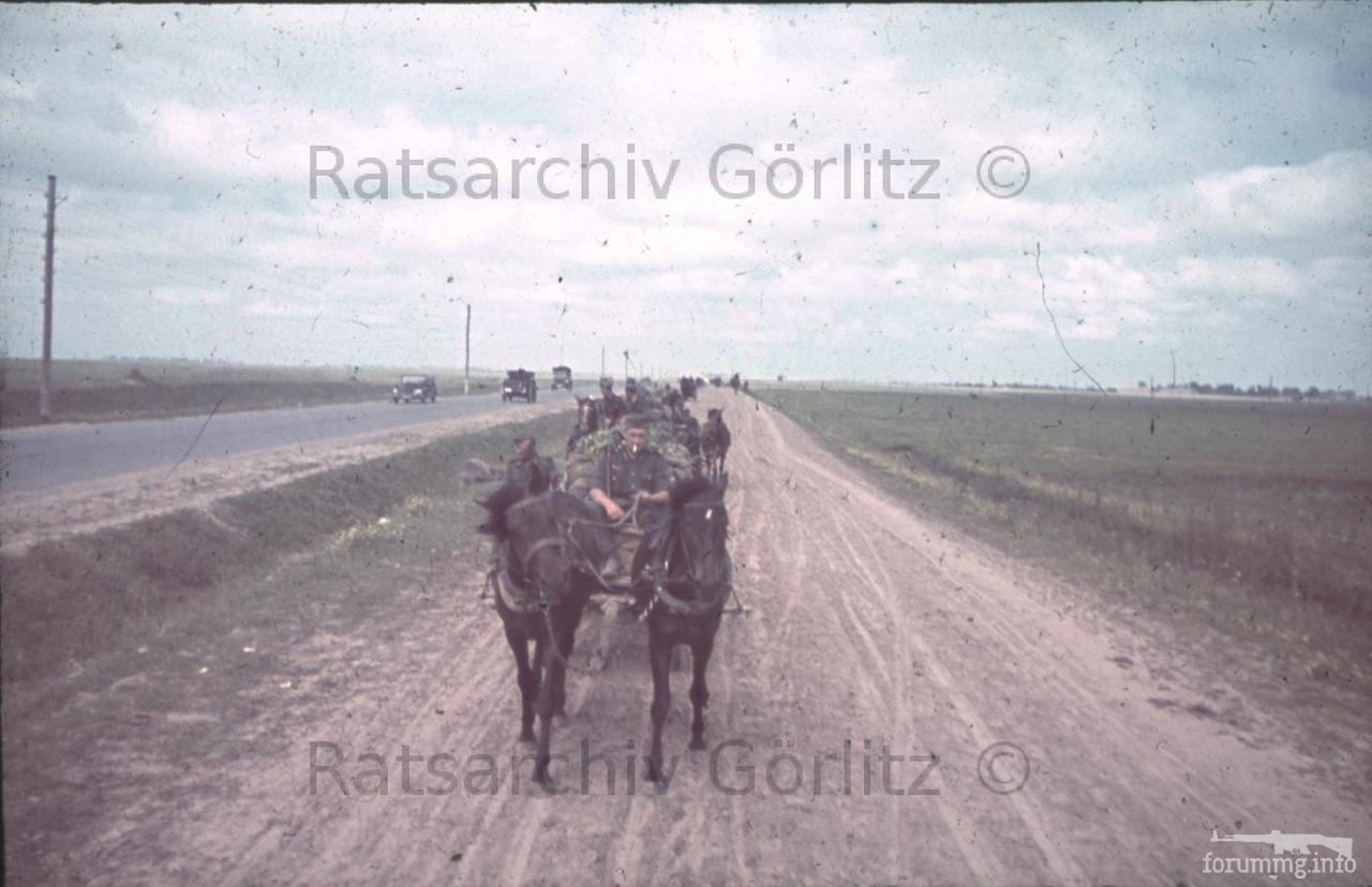 123574 - Оккупированная Украина в фотографиях