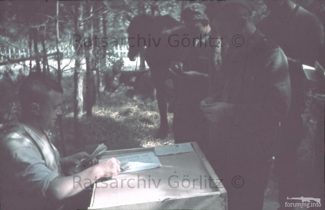 123578 - Оккупированная Украина в фотографиях