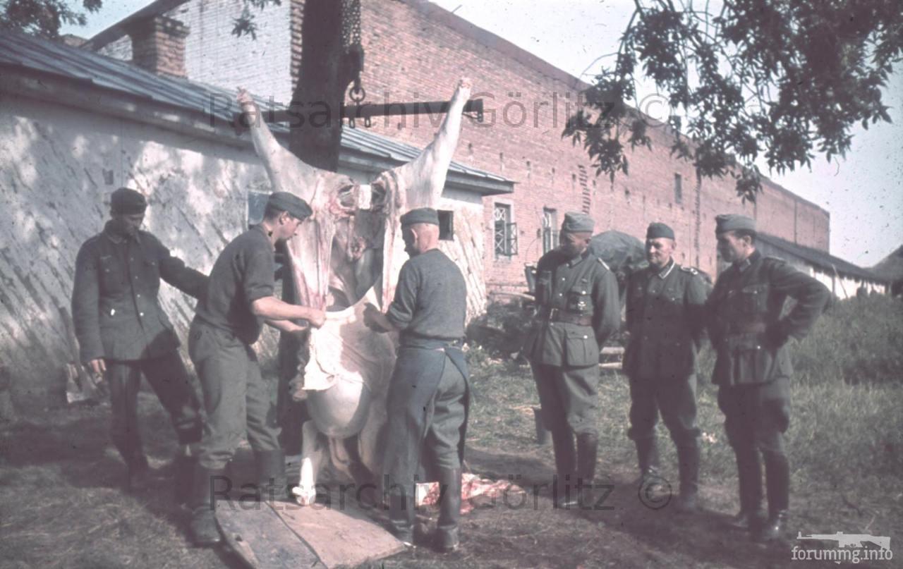 123597 - Оккупированная Украина в фотографиях