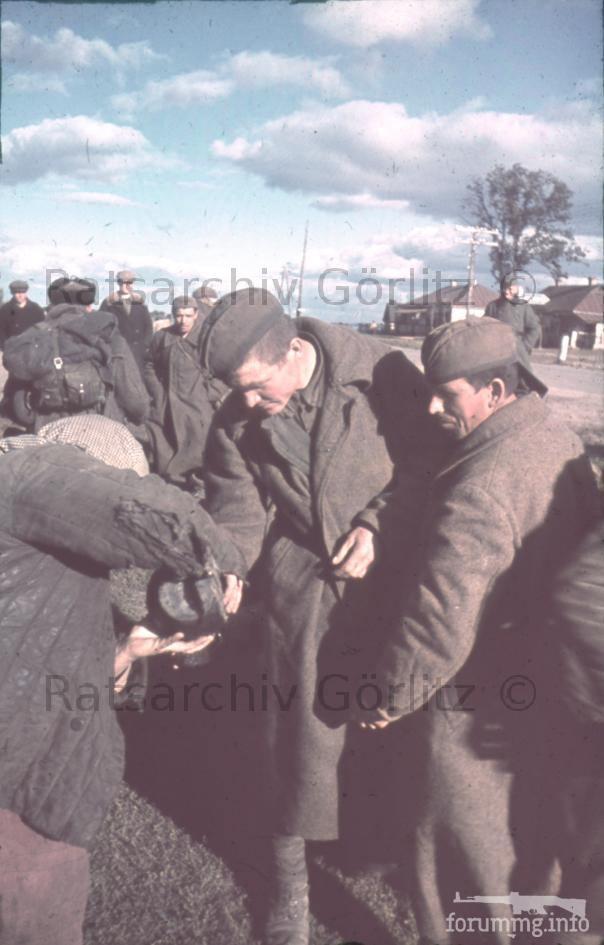 123599 - Оккупированная Украина в фотографиях