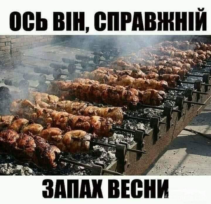 123820 - Закуски на огне (мангал, барбекю и т.д.) и кулинария вообще. Советы и рецепты.