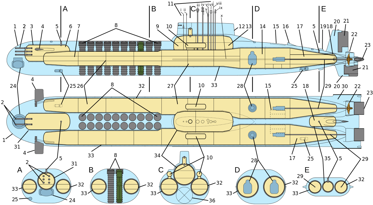 12461 - Общая схема внутреннего устройства ТРПКСН проекта 941: 1 - лёгкий корпус; 2 - 533-мм носовые торпедные аппараты; 3 - прочный корпус; 4 - носовые выдвижные горизонтальные рули; 5 - люки аварийного покидания ПЛ; 6 - торпедный отсек; 7 - гидроакустический отсек; 8 - шахты баллистических ракет Р-39; 9 - центральный пост; 10 - спасательные всплывающие камеры; 11 - выдвижные устройства; 12 - ограждение выдвижных устройств; 13 - отсек радиотехнического вооружения; 14 - реакторный отсек; 15 - люки всплывающих антенн связи; 16 - крыло, защищающее винто-рулевую группу от льда; 17 - турбинный отсек; 18 - КШР (кормовая шлюзовая рубка); 19 - гидродинамические направляющие; 20 - вертикальное кормовое оперение; 21 - вертикальные рули; 22 - гребной винт в кольцевой насадке; 23 - кормовые горизонтальные рули; 24 - антенна ГАС; 25 - выдвижные подруливающие устройства; 26 - ракетные отсеки; 27 - отсеки живучести; 28 - ядерный реактор; 29 - линия главного гребного вала; 30 - горизонтальное кормовое оперение; 31 - носовой прочный модуль; 32 - главный прочный корпус (правый); 33 - главный прочный корпус (левый); 34 - центральный прочный модуль; 35 - кормовой прочный модуль; 36 - цистерна быстрого погружения i - командирский перископ; ii - универсальный перископ; iii - радиосекстант; iv - радиолокационный комплекс; v - РКП; vi, viii - радиоантенны систем связи; vii - радиопеленгатор; ix - антенна системы космической навигации; x - ГПБА