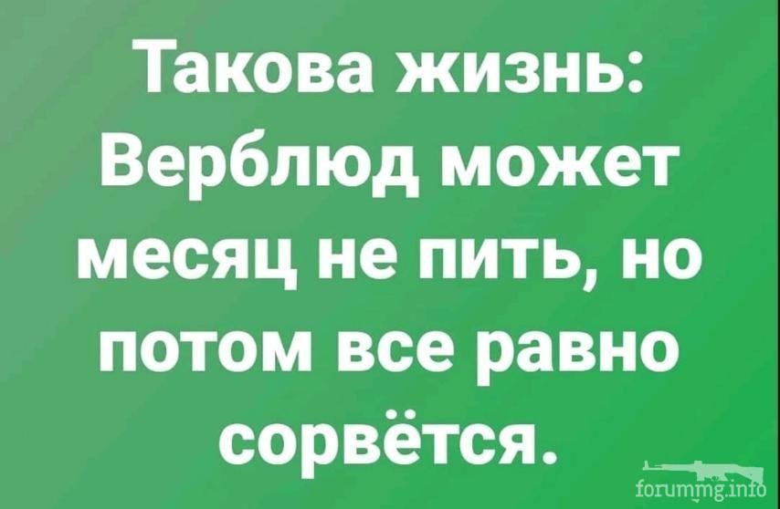 125351 - Пить или не пить? - пятничная алкогольная тема )))