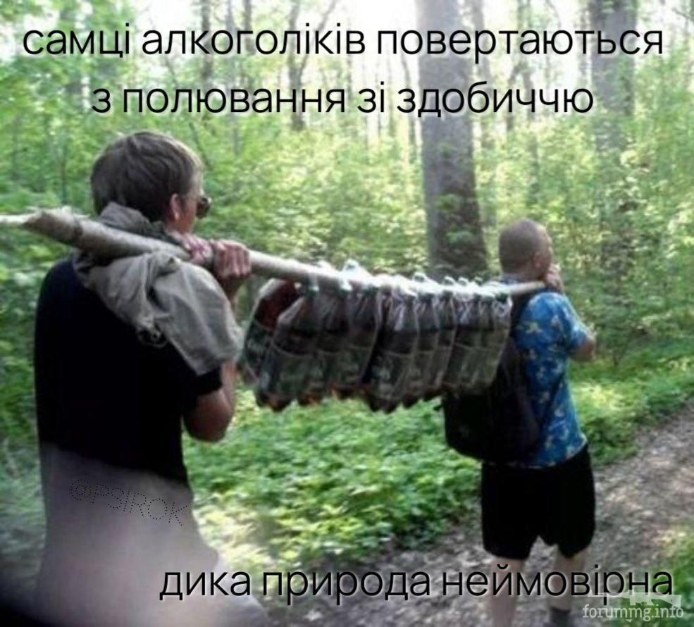 126057 - Пить или не пить? - пятничная алкогольная тема )))