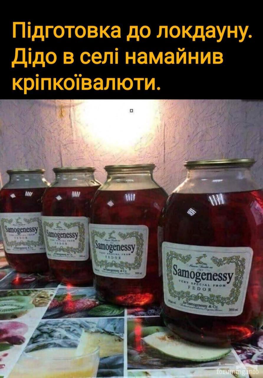 126361 - Пить или не пить? - пятничная алкогольная тема )))