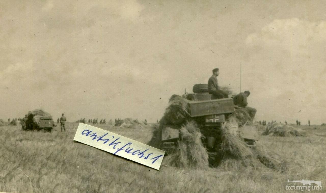 126640 - Военное фото 1941-1945 г.г. Восточный фронт.