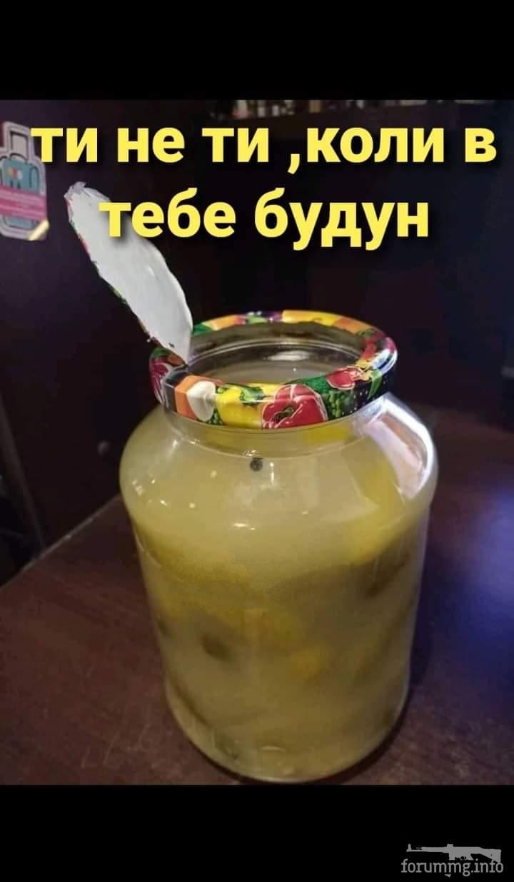 126814 - Пить или не пить? - пятничная алкогольная тема )))