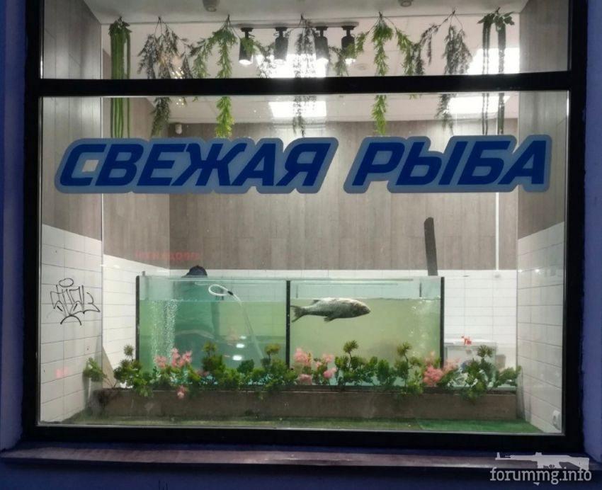 127010 - А в России чудеса!