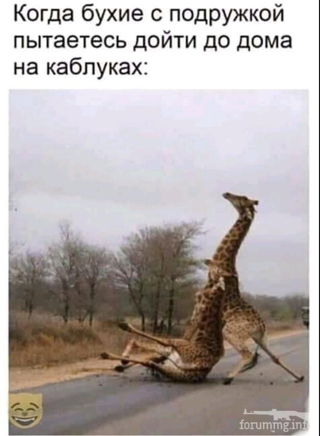 127026 - Пить или не пить? - пятничная алкогольная тема )))
