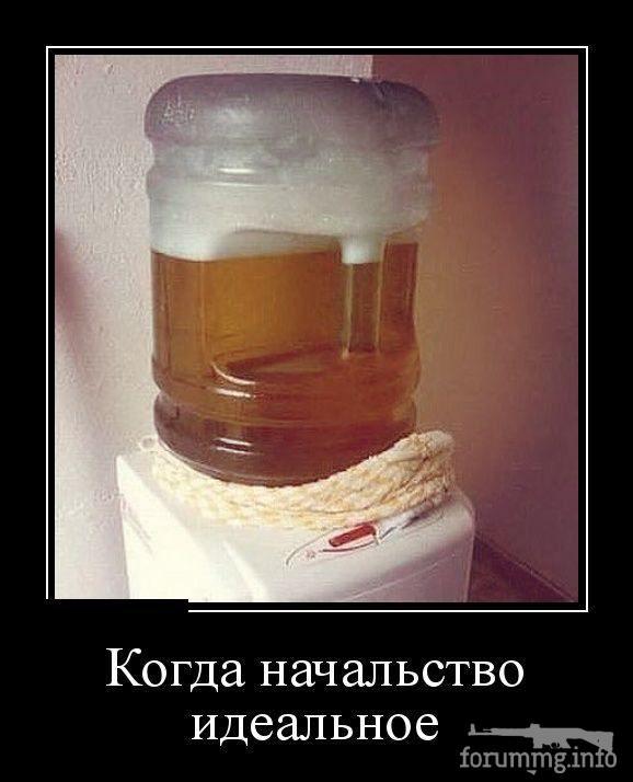 127027 - Пить или не пить? - пятничная алкогольная тема )))
