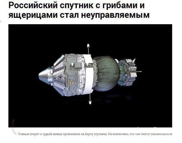 128293 - А в России чудеса!