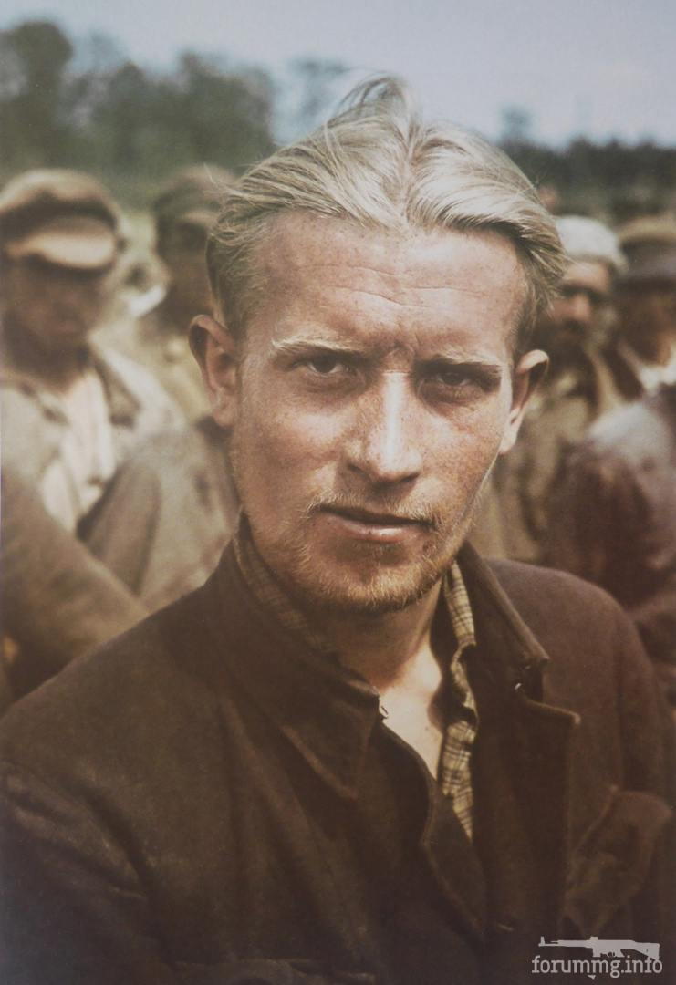 128879 - Лето 1941г,немецкие фото.