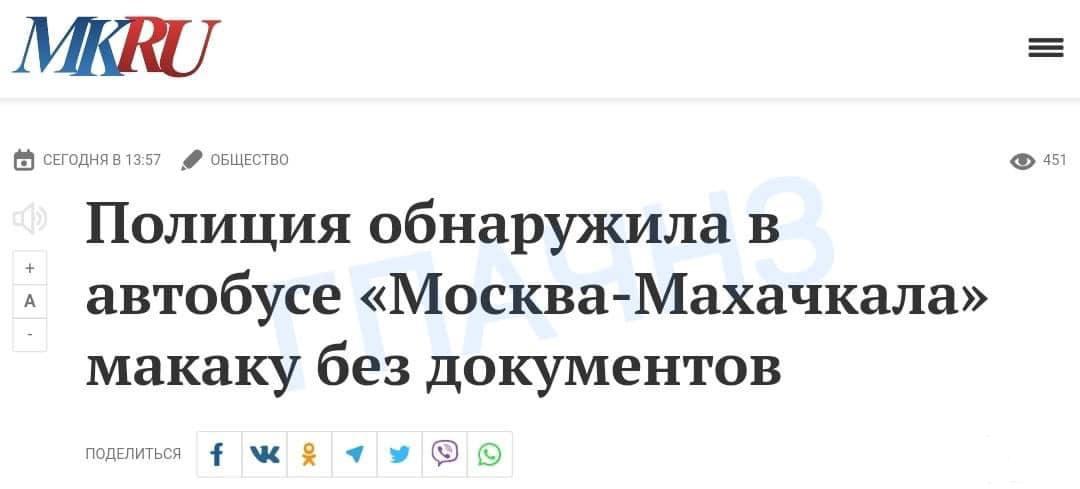 129204 - А в России чудеса!