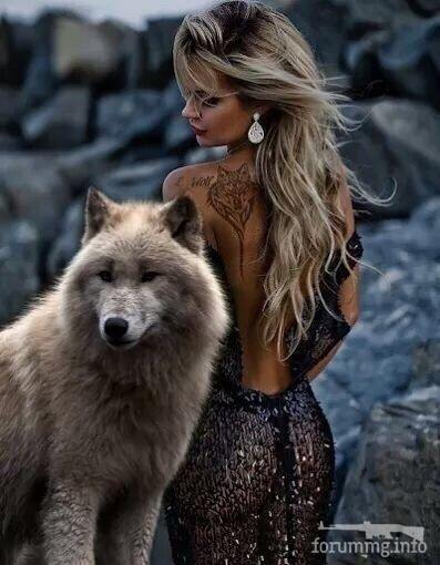 130209 - Красивые животные