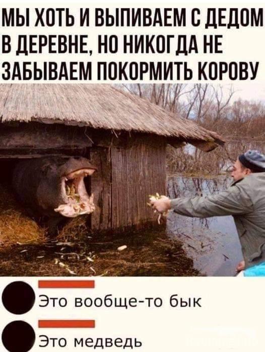 130498 - Пить или не пить? - пятничная алкогольная тема )))