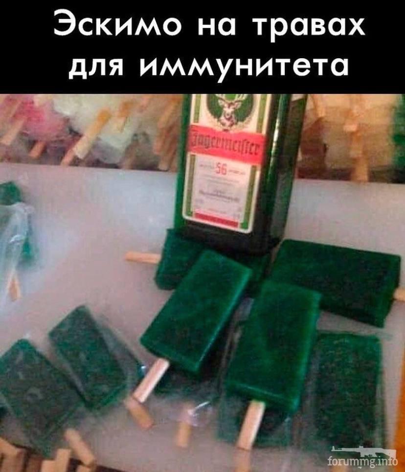 130556 - Пить или не пить? - пятничная алкогольная тема )))