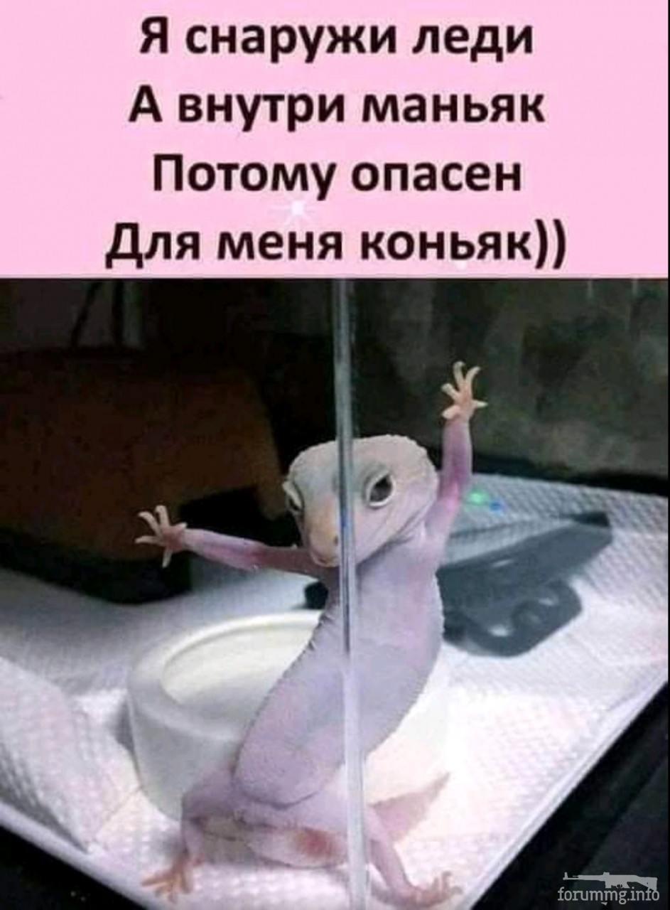 130829 - Пить или не пить? - пятничная алкогольная тема )))