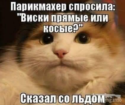 131016 - Пить или не пить? - пятничная алкогольная тема )))