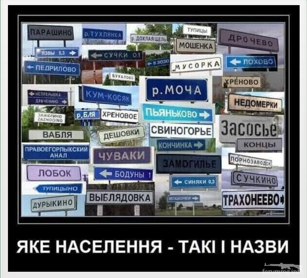 131532 - А в России чудеса!