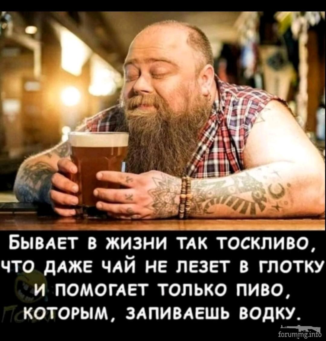 131636 - Пить или не пить? - пятничная алкогольная тема )))
