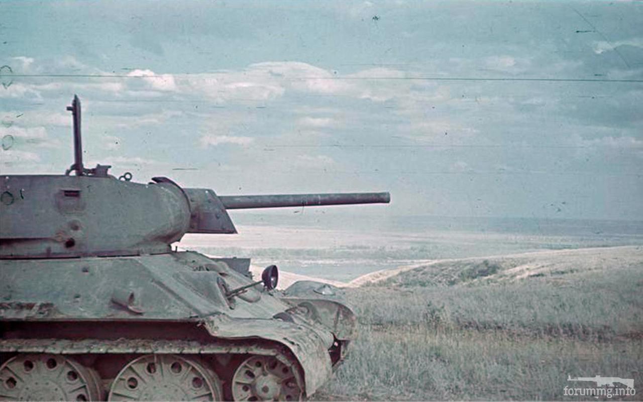131699 - Военное фото 1941-1945 г.г. Восточный фронт.