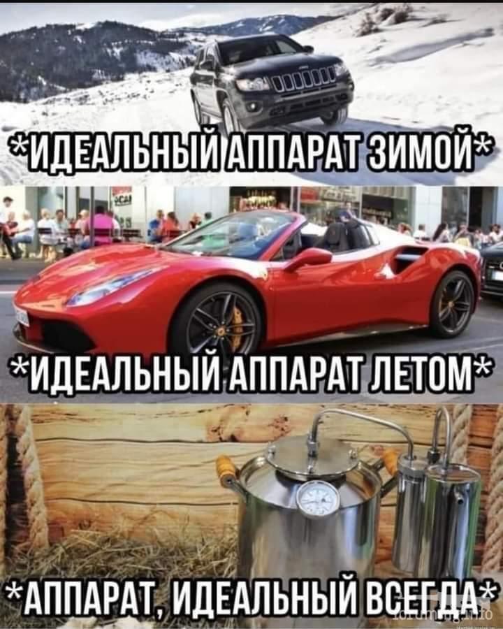 132049 - Пить или не пить? - пятничная алкогольная тема )))