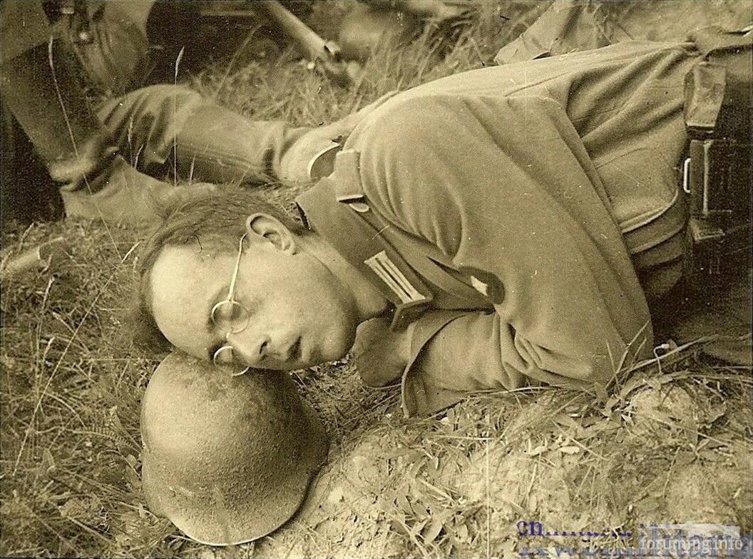 132370 - Военное фото 1941-1945 г.г. Восточный фронт.