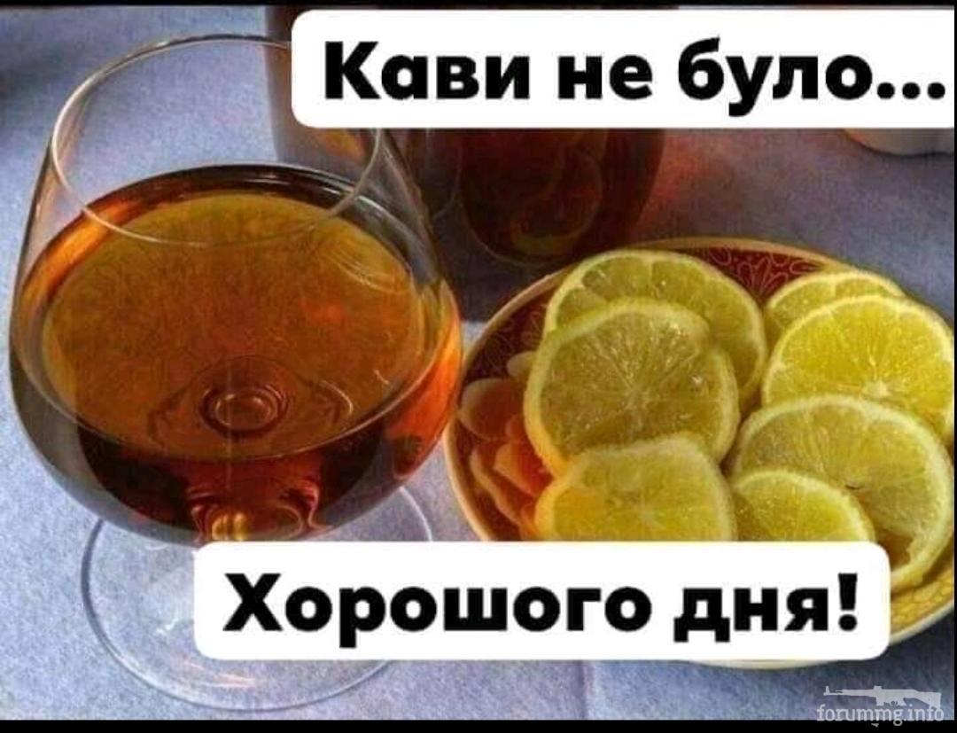 132582 - Пить или не пить? - пятничная алкогольная тема )))