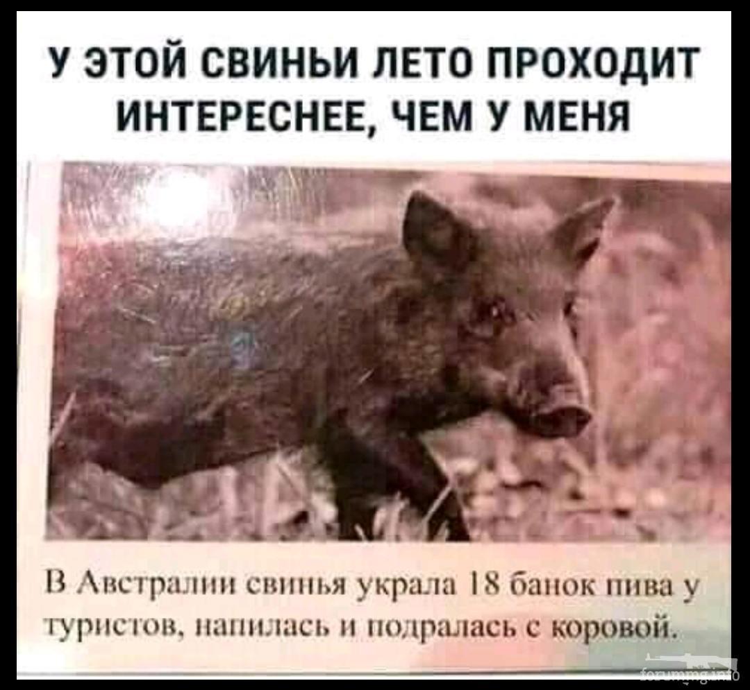 132670 - Пить или не пить? - пятничная алкогольная тема )))