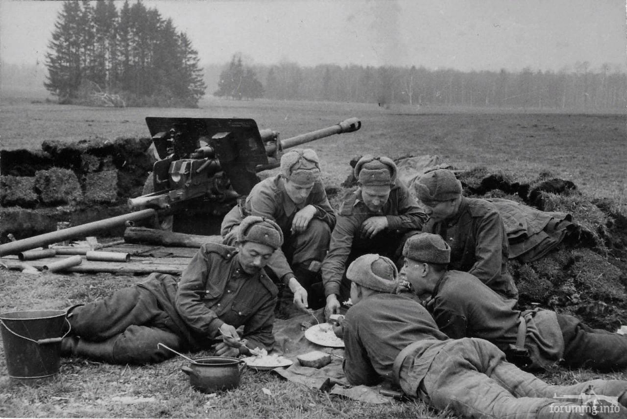 132955 - Военное фото 1941-1945 г.г. Восточный фронт.