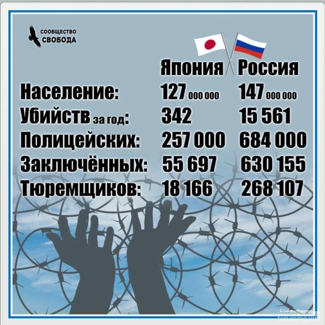 133627 - А в России чудеса!