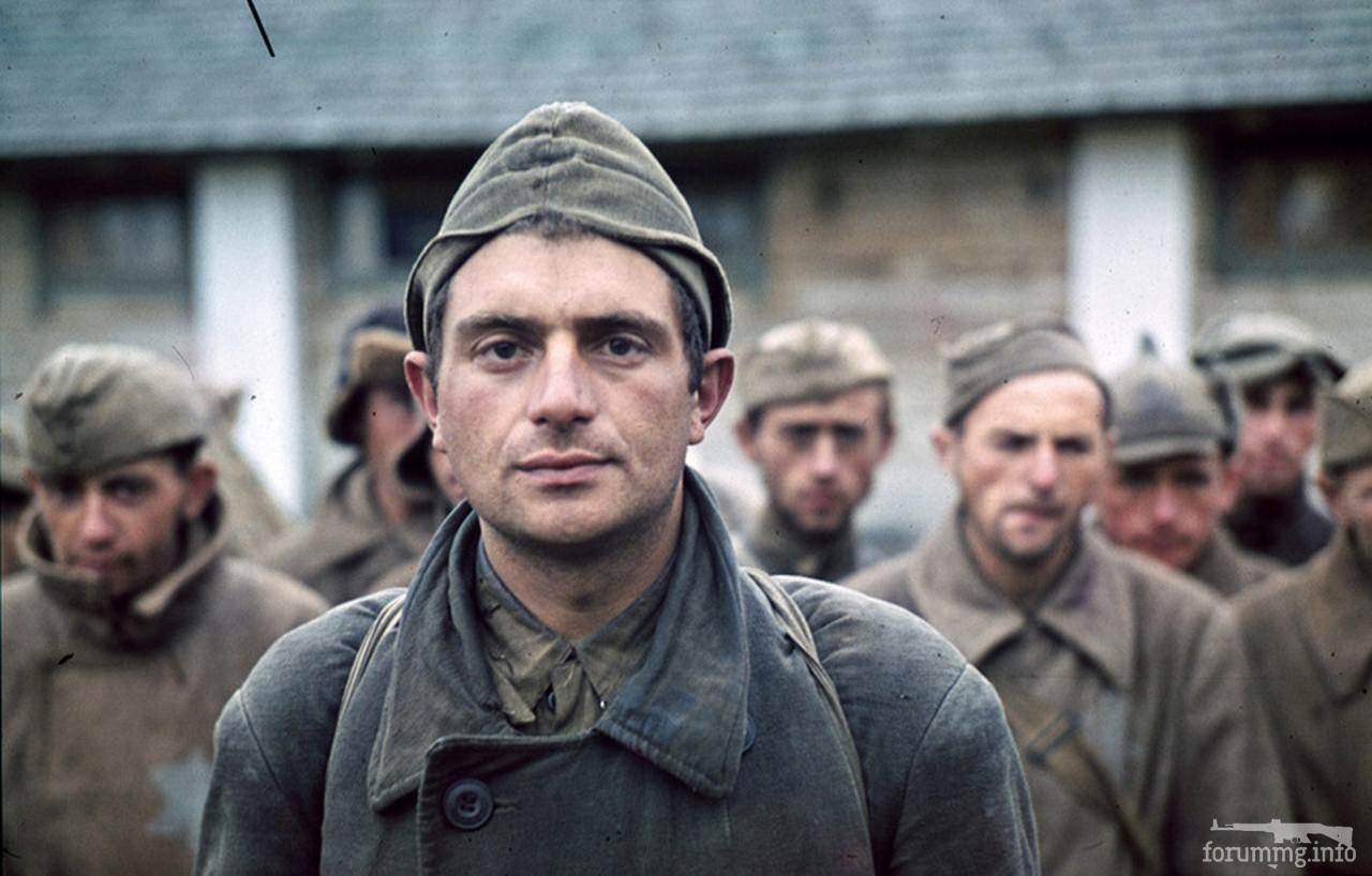 134967 - Военное фото 1941-1945 г.г. Восточный фронт.