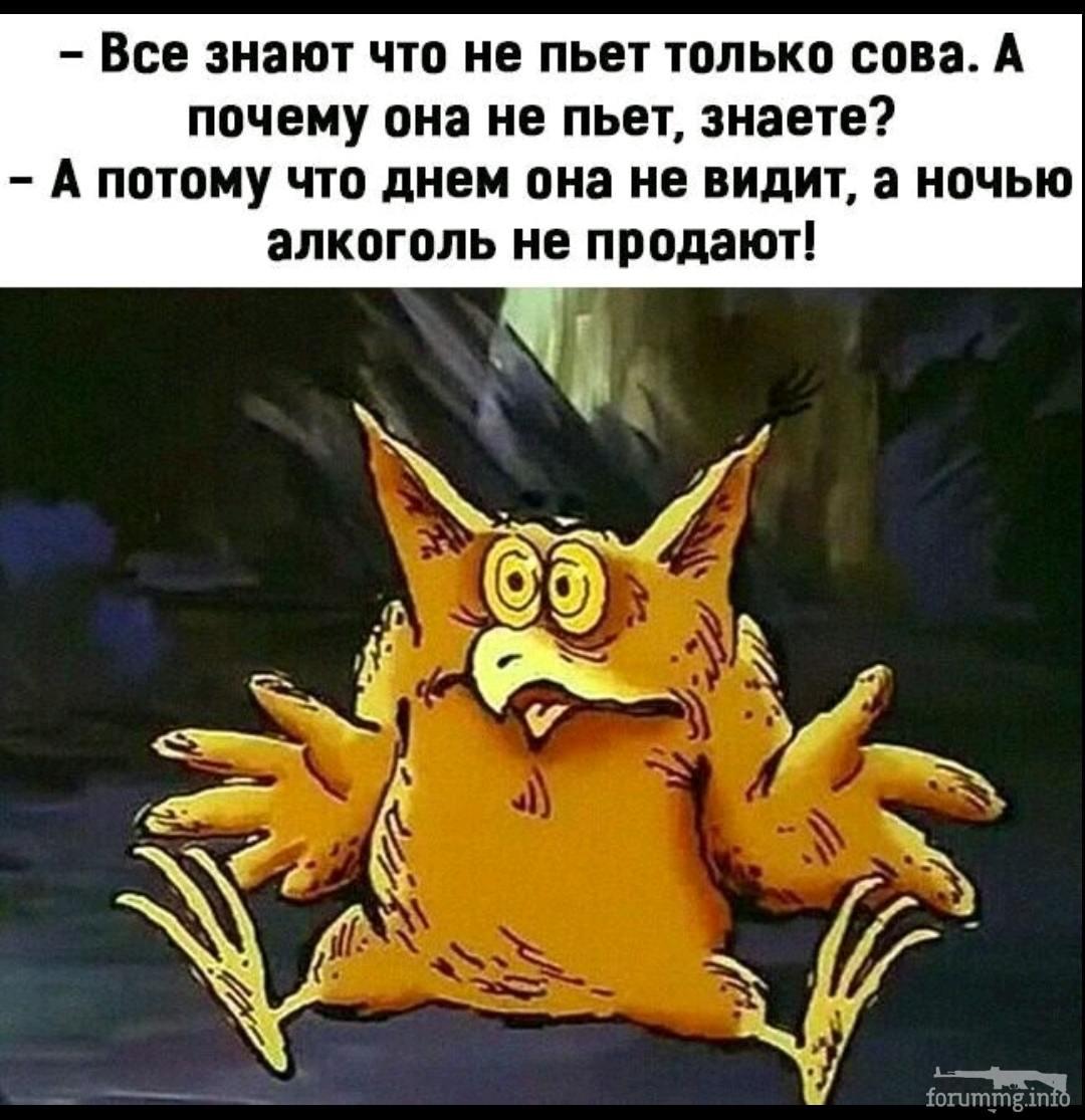 135838 - Пить или не пить? - пятничная алкогольная тема )))