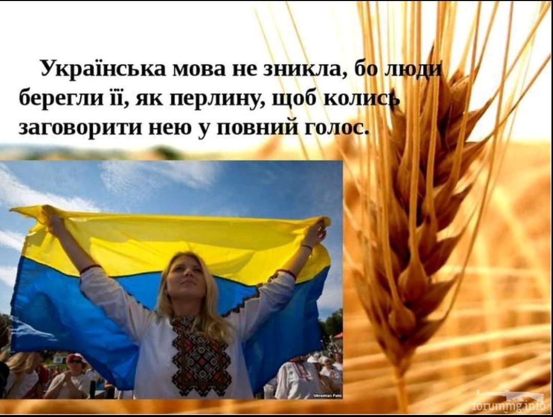 136653 - Украинцы и россияне,откуда ненависть.