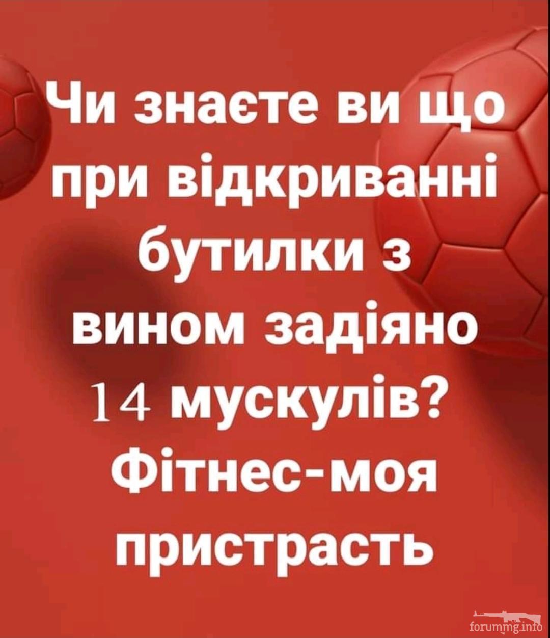 136953 - Пить или не пить? - пятничная алкогольная тема )))