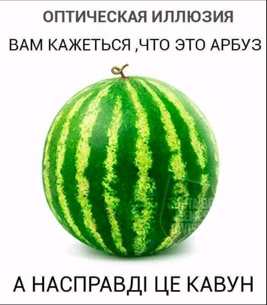 137057 - Украинцы и россияне,откуда ненависть.