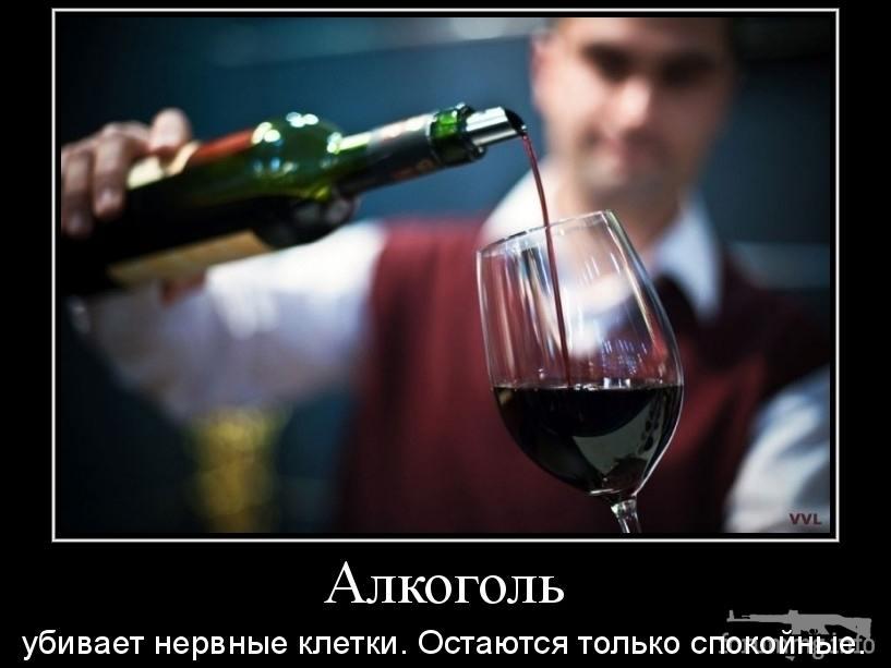 137740 - Пить или не пить? - пятничная алкогольная тема )))