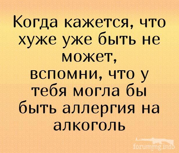 137741 - Пить или не пить? - пятничная алкогольная тема )))
