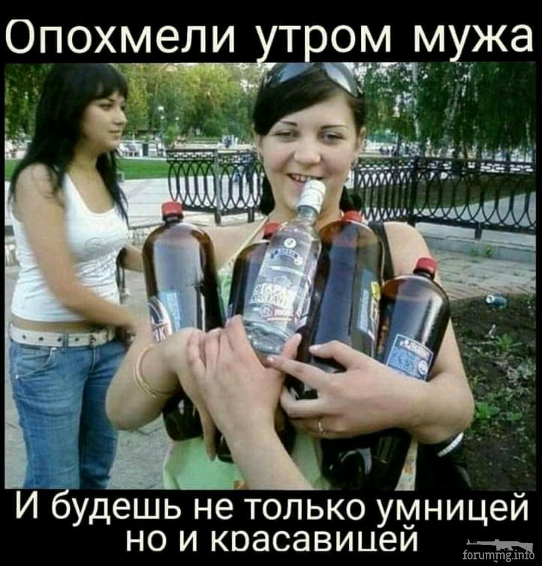 138351 - Пить или не пить? - пятничная алкогольная тема )))