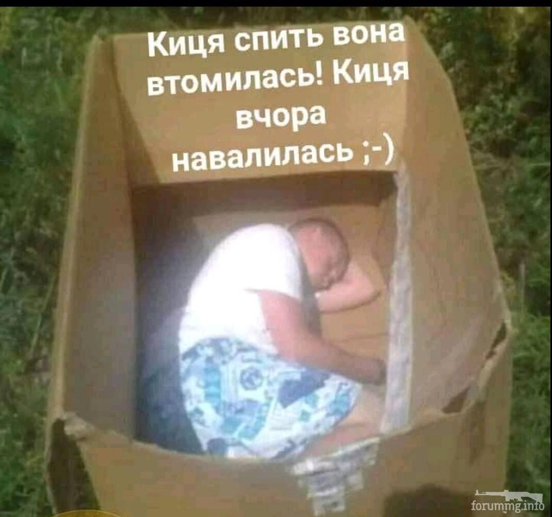 139752 - Пить или не пить? - пятничная алкогольная тема )))