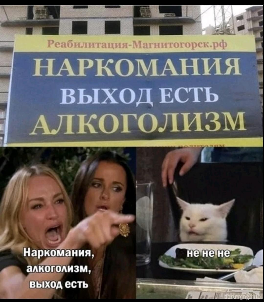 139757 - Пить или не пить? - пятничная алкогольная тема )))
