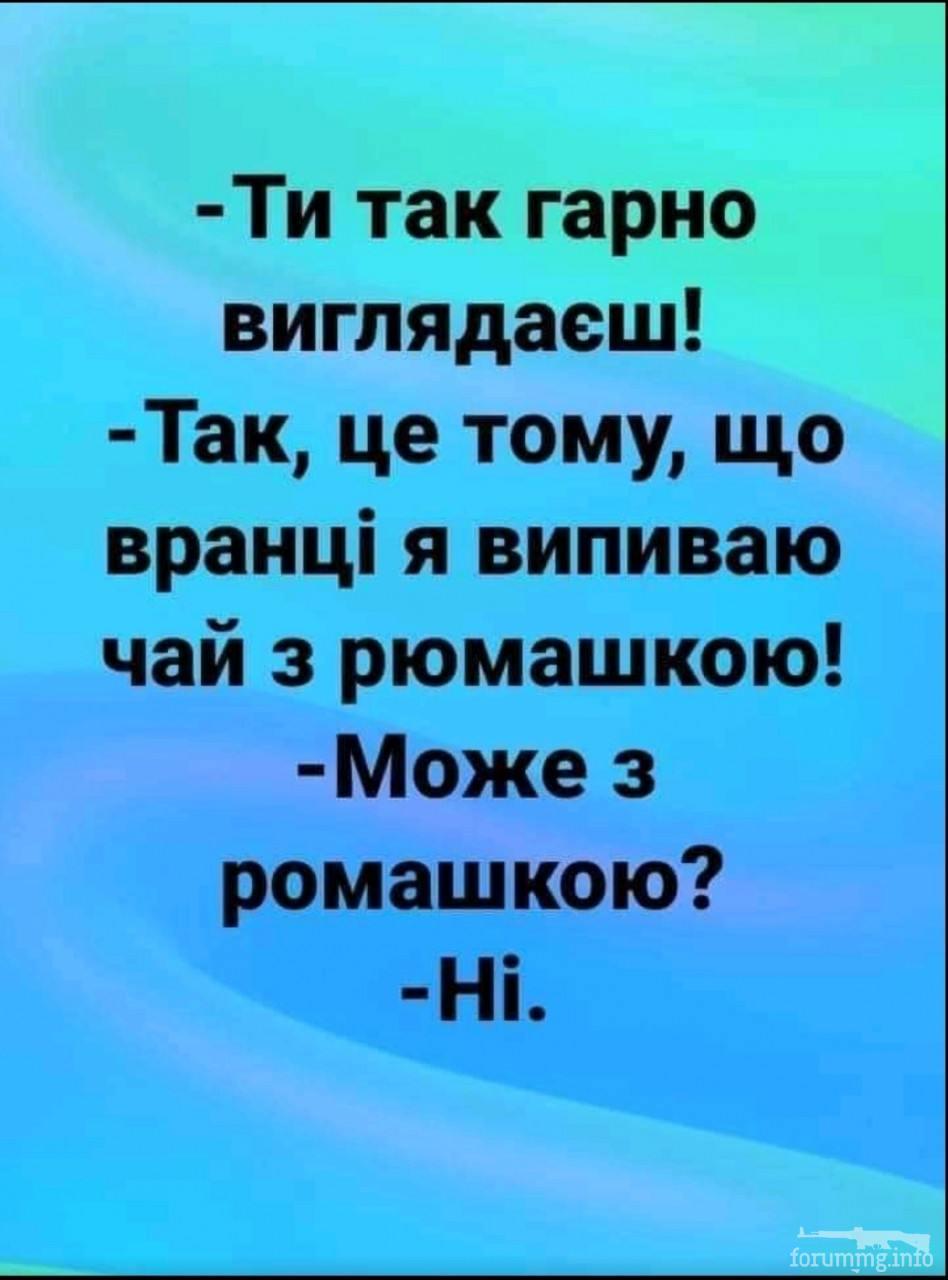 139758 - Пить или не пить? - пятничная алкогольная тема )))