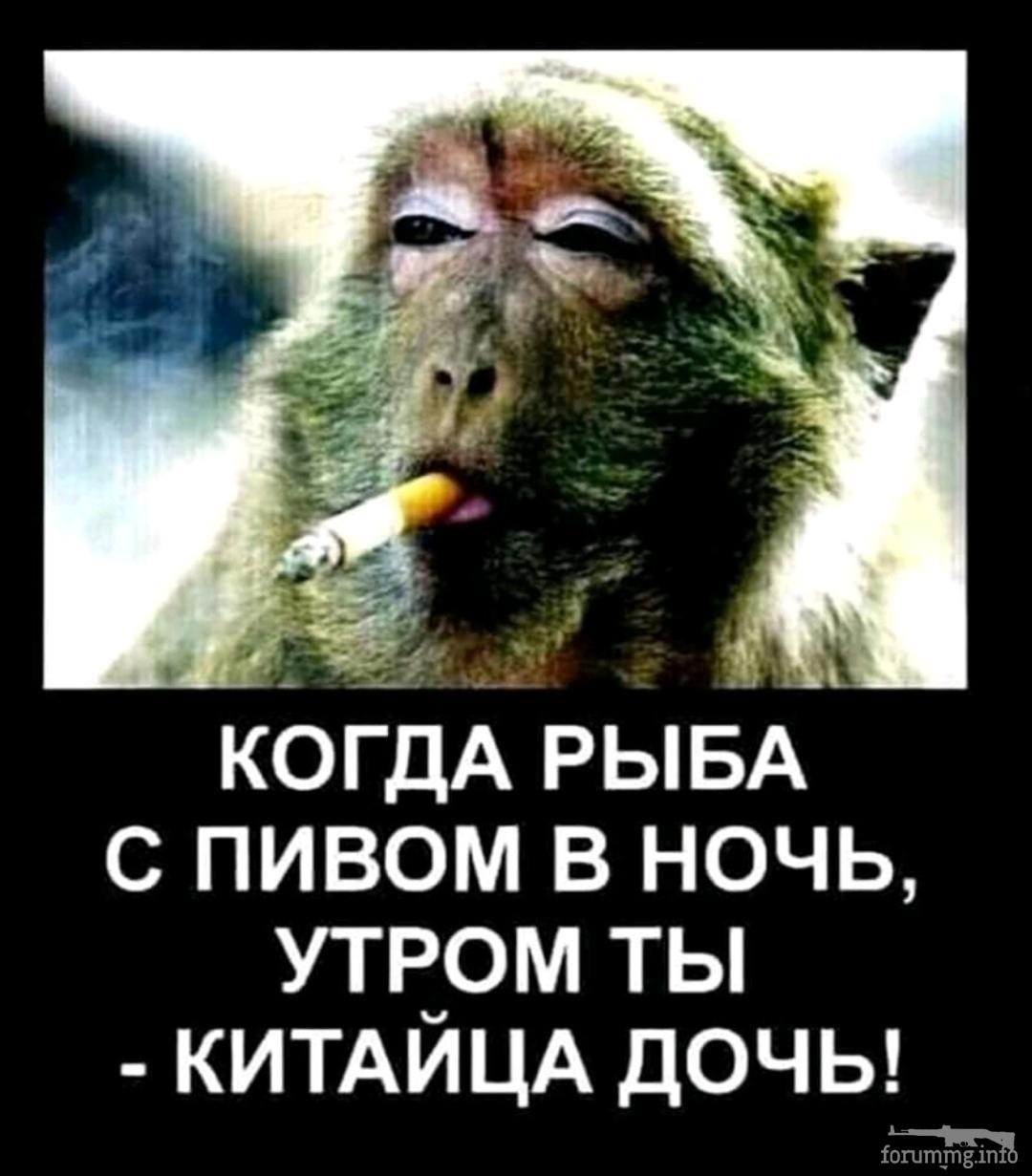 139759 - Пить или не пить? - пятничная алкогольная тема )))