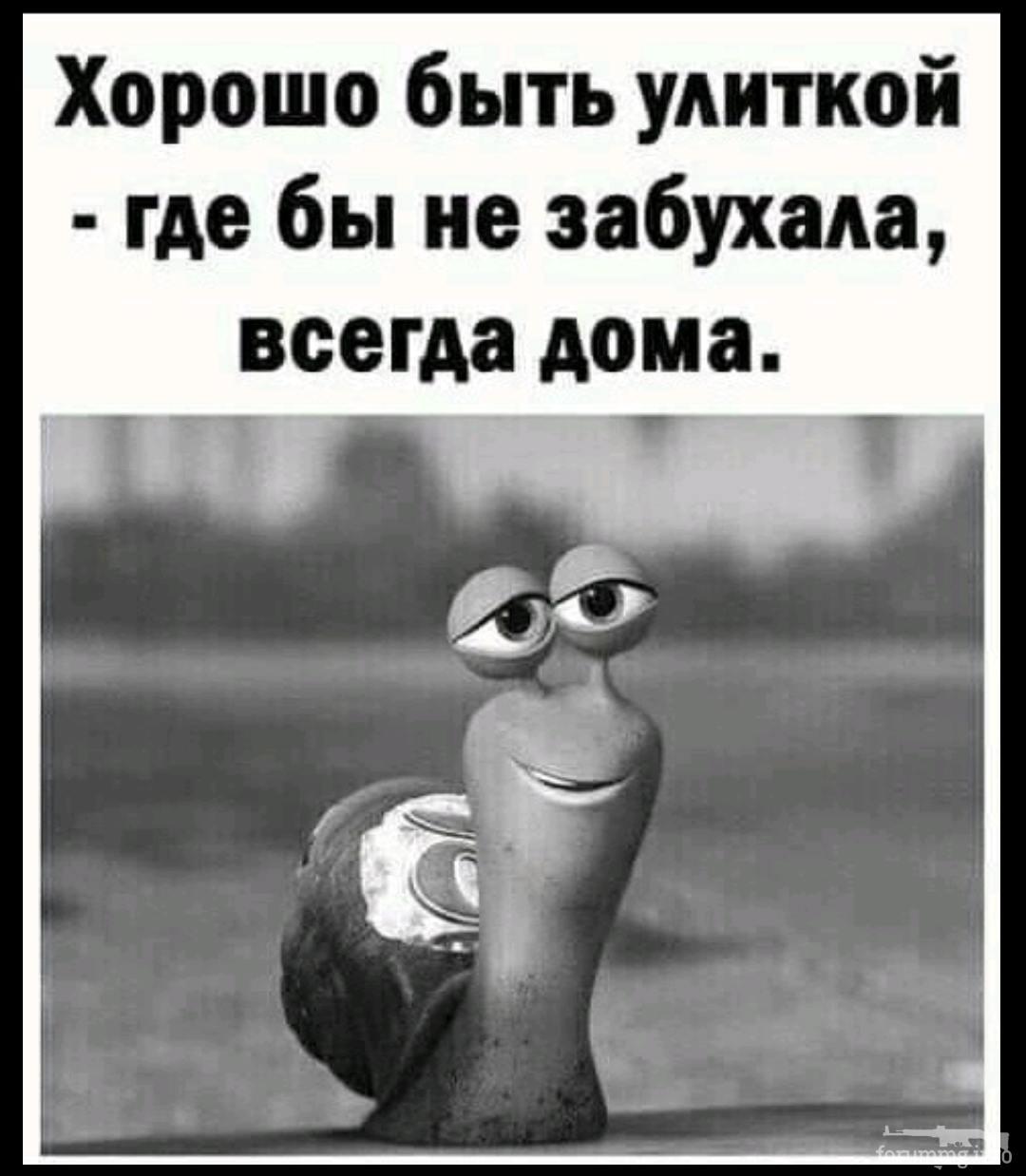 139782 - Пить или не пить? - пятничная алкогольная тема )))