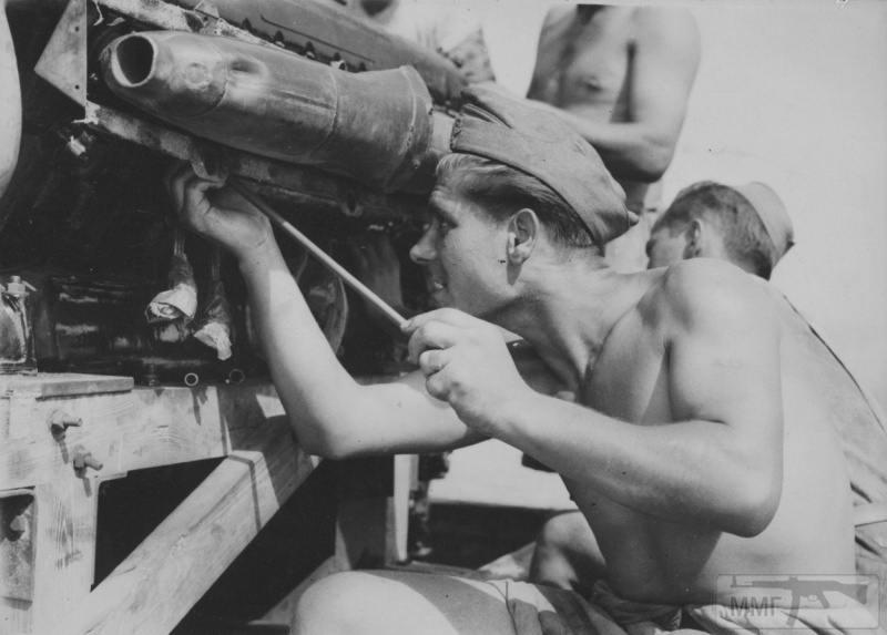 14254 - Союзники Германии на Восточном фронте