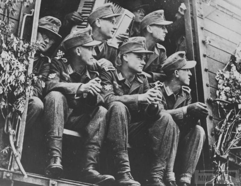 14255 - Союзники Германии на Восточном фронте