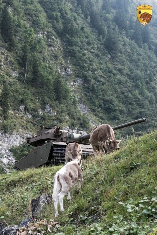 15153 - Современные танки