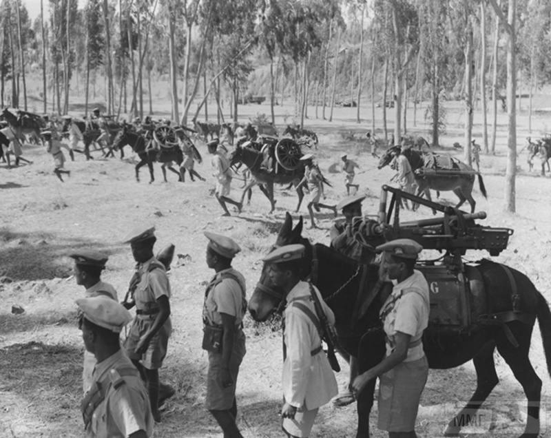 15808 - Военное фото 1939-1945 г.г. Западный фронт и Африка.
